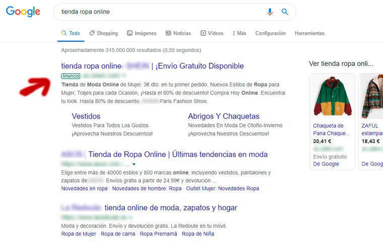 Ejemplo de Búsqueda SEM de Google